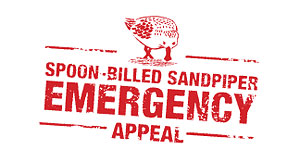 Spoon-billed Sandpiper appeal logo