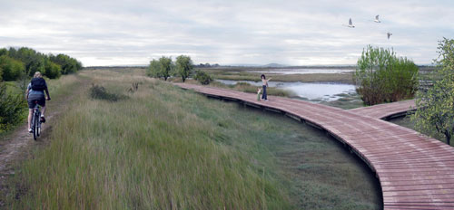 Artist impression of the boardwalk cycle and bridle access