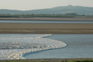 The Severn Bore (c) JSLees WWT