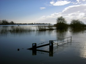 Flooded fen by Alan Payne
