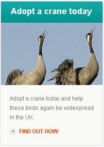 adopt_a_crane
