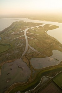 Steart Marshes from above - WWT gets creative on a huge scale, all these channels are manmade to create a working landscape which protects homes for people, and creates homes for wildlife