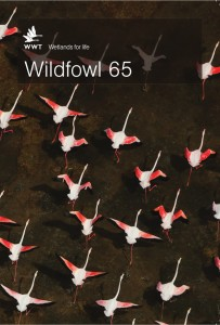 Wildfowl_65_cover_vs1a