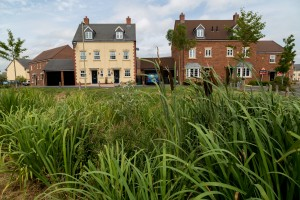 Rain runs off the roofs and parking spaces - into a wildlife-rich wetland