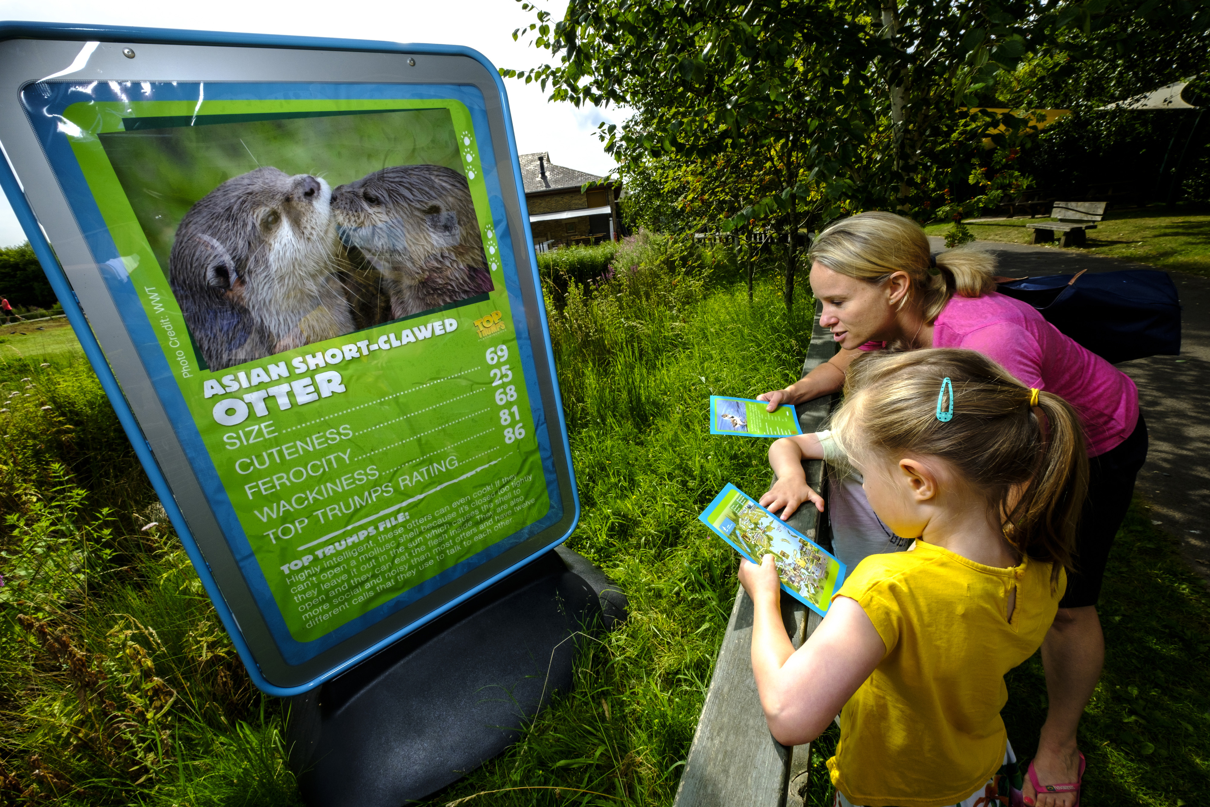 Let the Kids Go Wild this Summer    Dusty's Wildlife Rangers at WWT Martin Mere Wetland Centre    21 July – 3 September    Children of all ages can join Dusty Duck, pick up their very own FREE log book and become real-life wildlife rangers at WWT Martin Mere Wetland Centre this summer holiday.