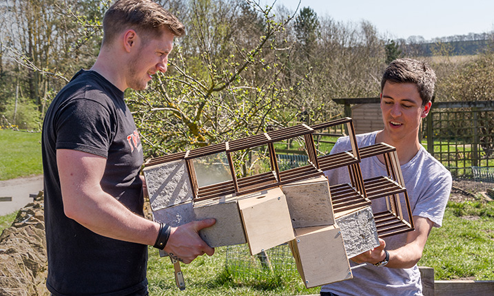 Future architects create homes for wildlife