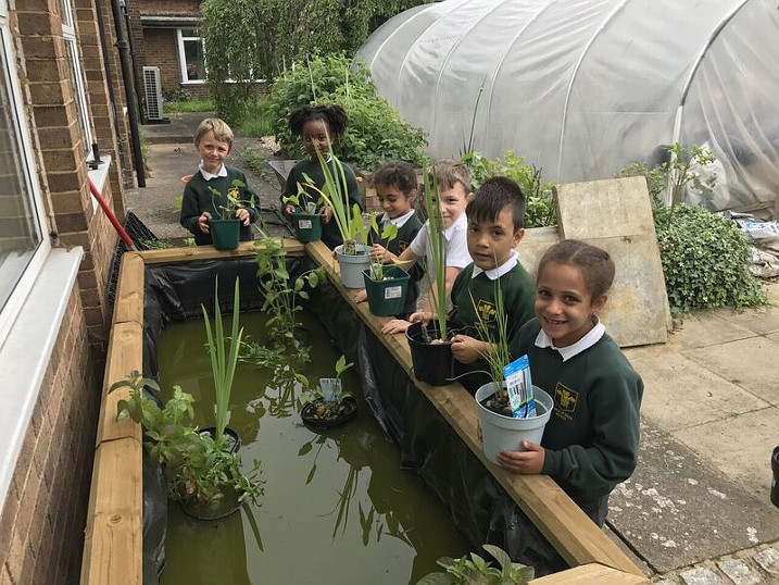 Making a splash! Pupils at Enfield's Prince of Wales Primary plant water garden