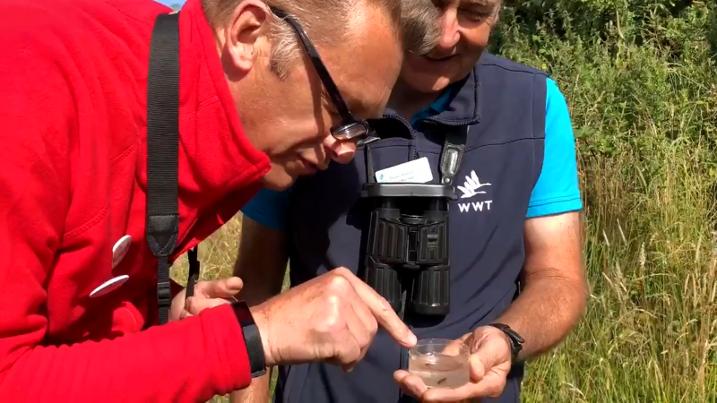 Chris Packham's Caerlaverock visit unearths unusual discovery