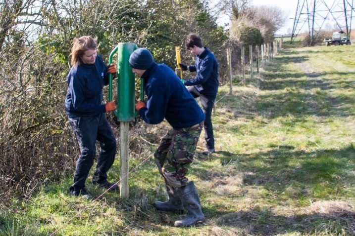 Reserve volunteers working at Steart Marshes