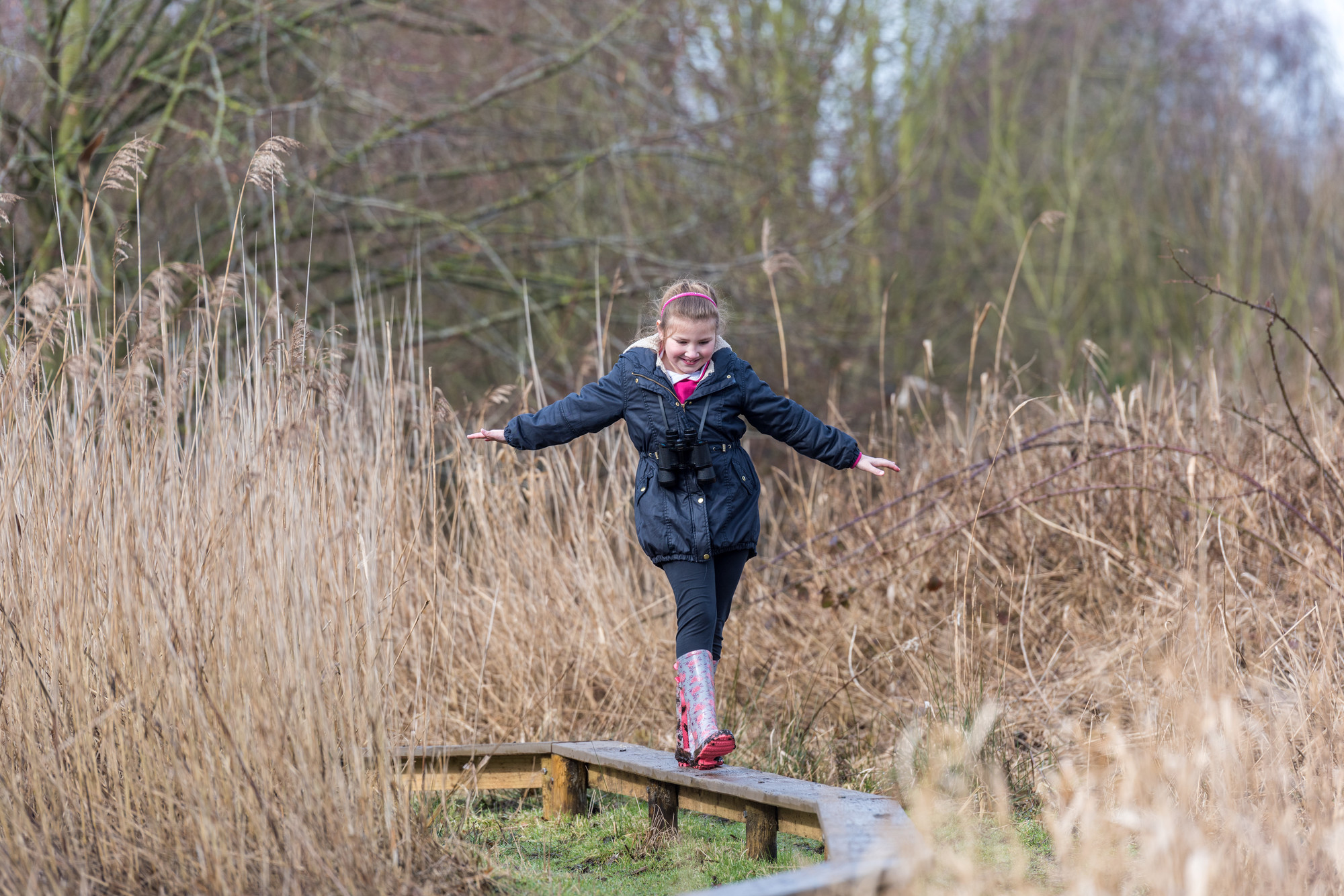 Go on a Wild Walk at WWT London Wetland Centre