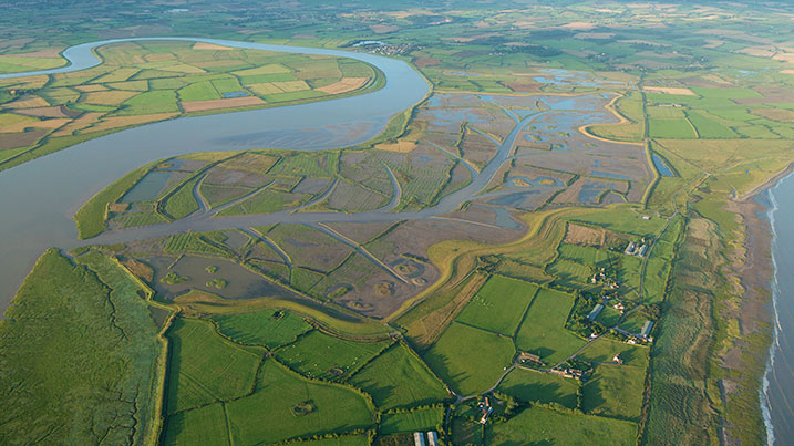 Steart Marshes from the air