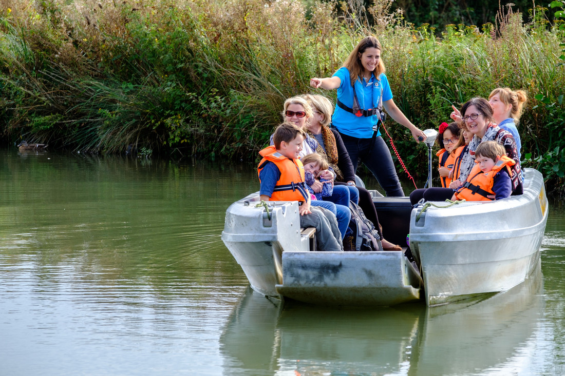 View: Wetland Discovery Boat Safari