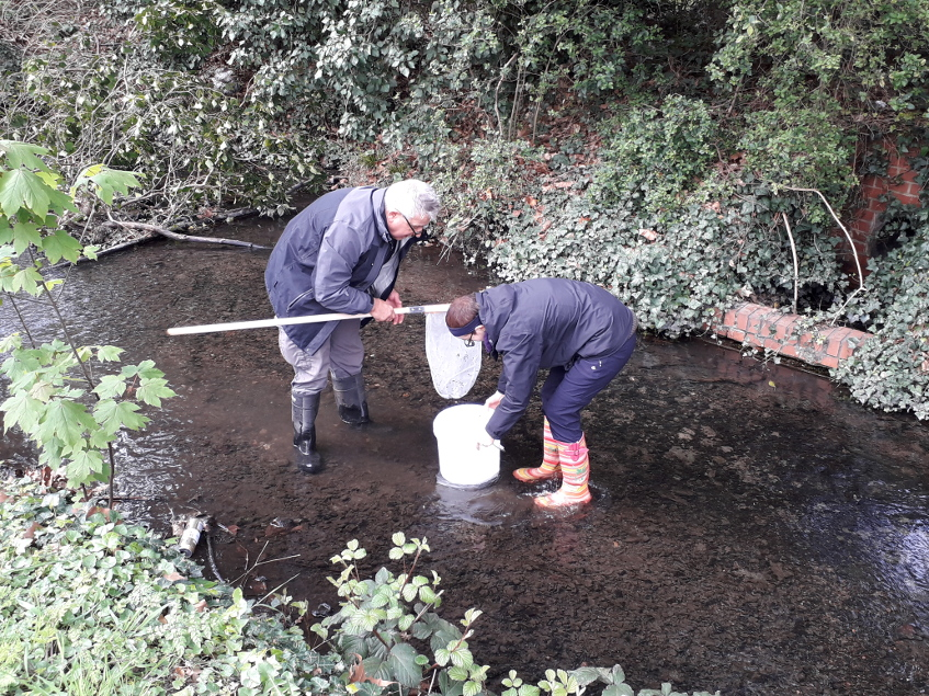 Slough residents turn animal detectives to save local stream