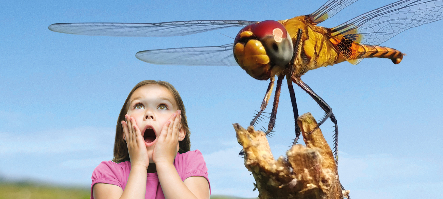 Giant Bionic Bugs at WWT Martin Mere this summer holiday