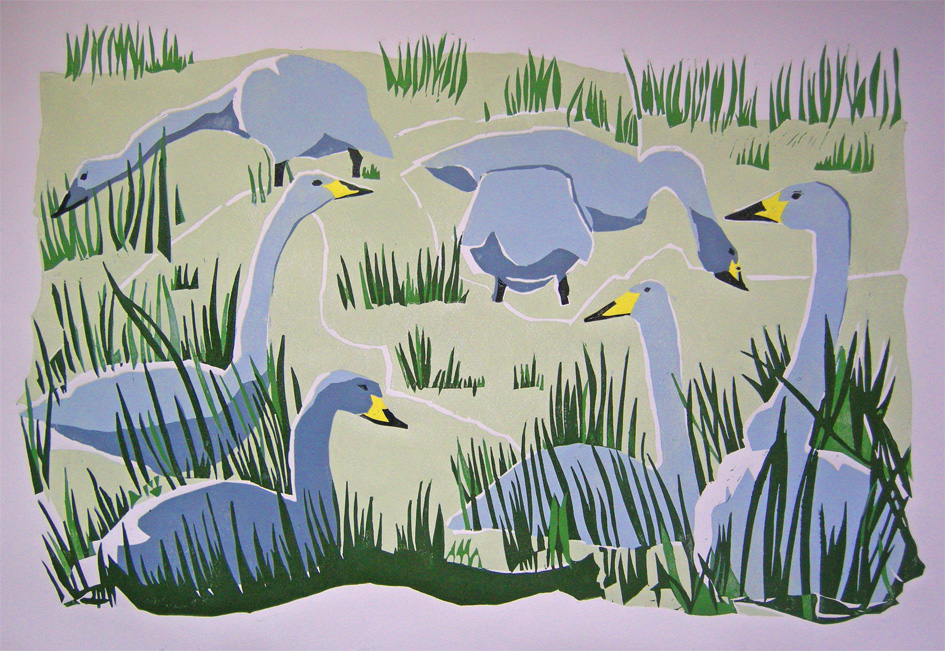 View: Lisa Hooper: Wildlife Exhibition