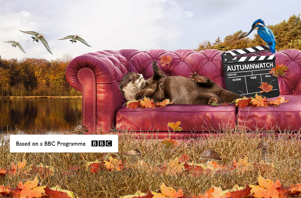Become a Wildlife Presenter with the BBC Autumnwatch Experience