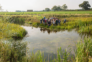 Restoring lost farmland ponds