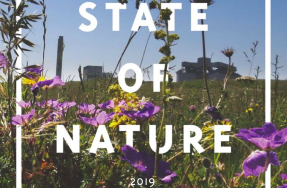 State of Nature Report 2019: what it means for wetlands