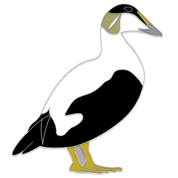 Eider Male Pin Badge