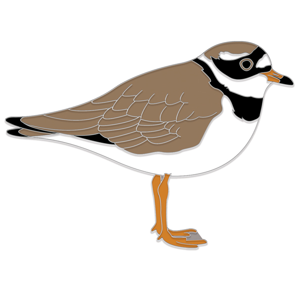 Ringed Plover Pin Badge