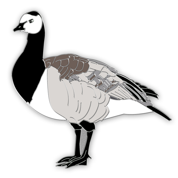 Barnacle goose pin badge
