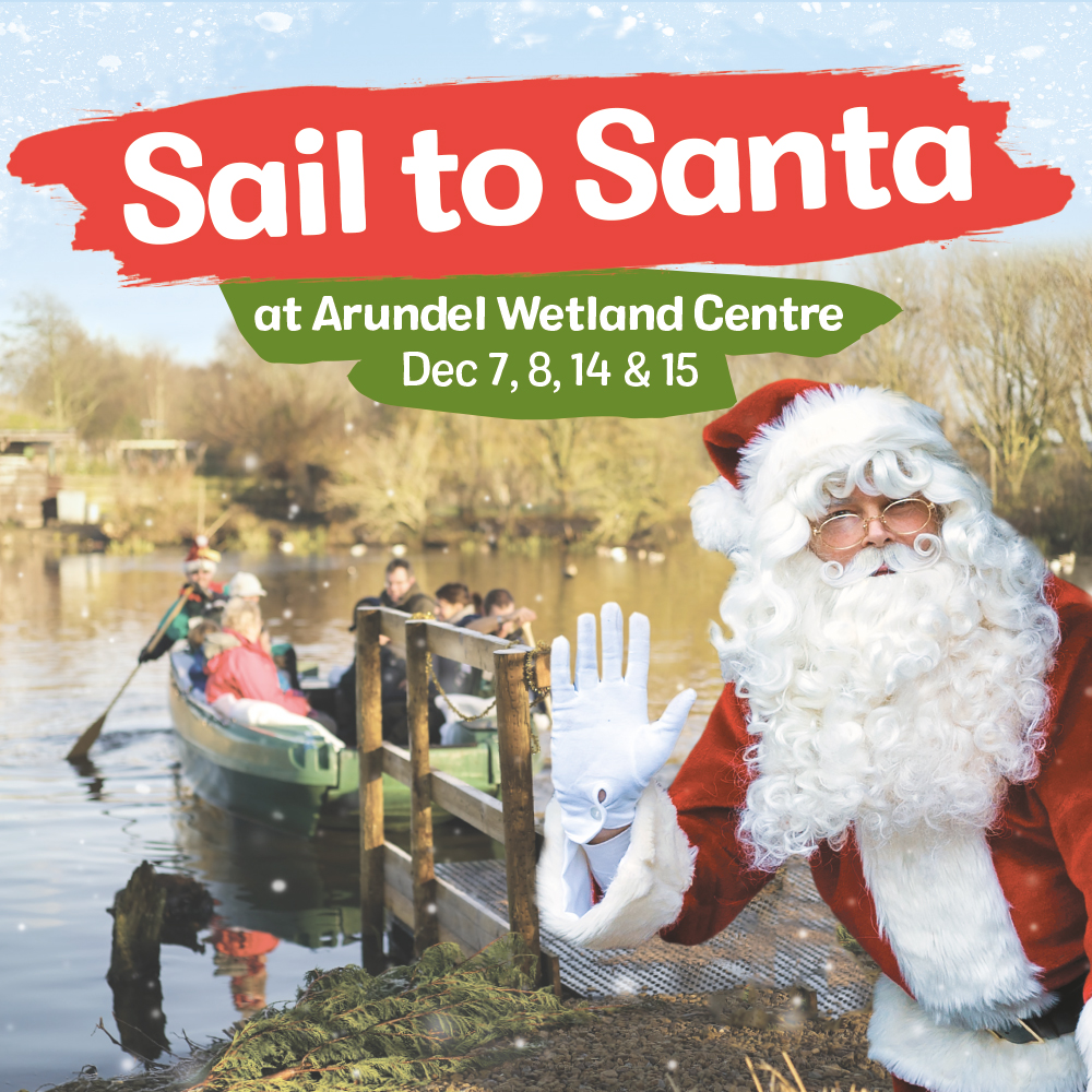 View: Sail to Santa