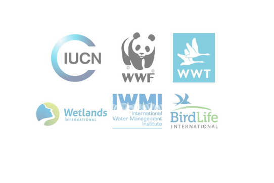 Commit to saving wetlands to solve the biodiversity and climate crises this World Wetlands Day