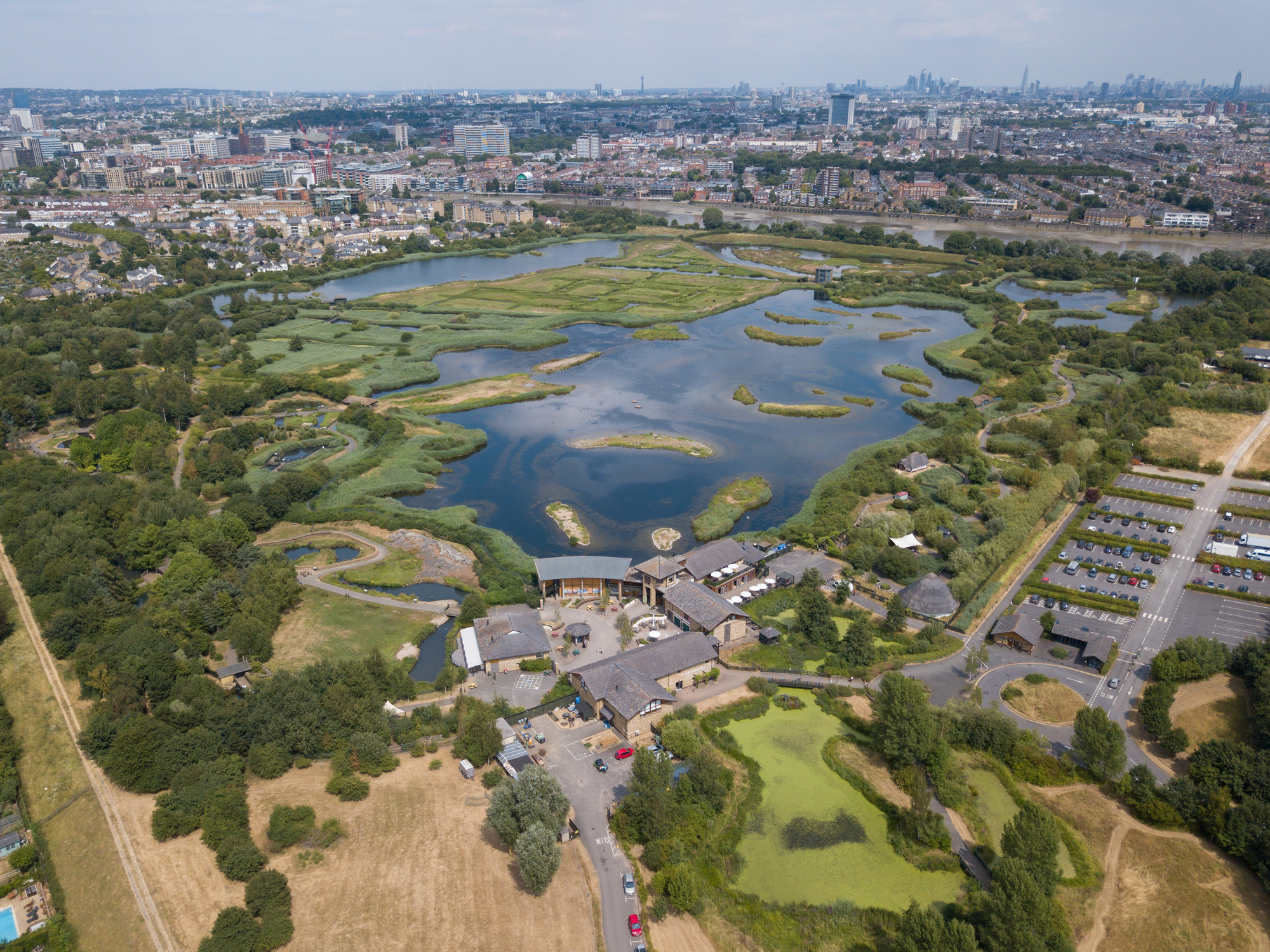 The Importance of Urban Wetlands