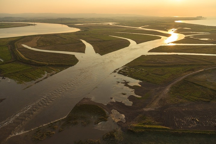 WWT joins raft of organisations calling on Government to prioritise green recovery