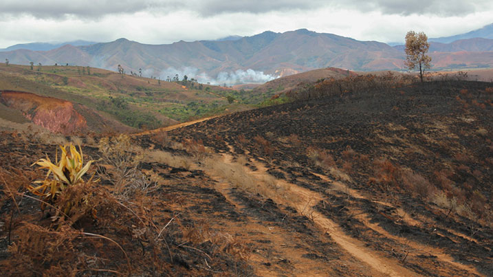 Burning and deforestation Madagascar