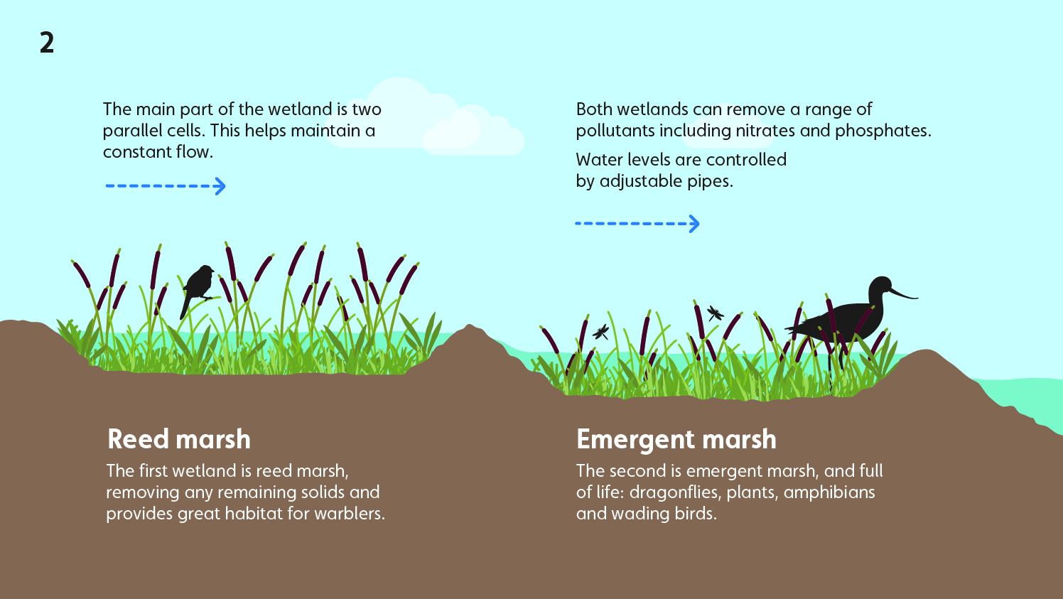 Wetland water treatment system - part 2 - reed marsh and emergent marsh
