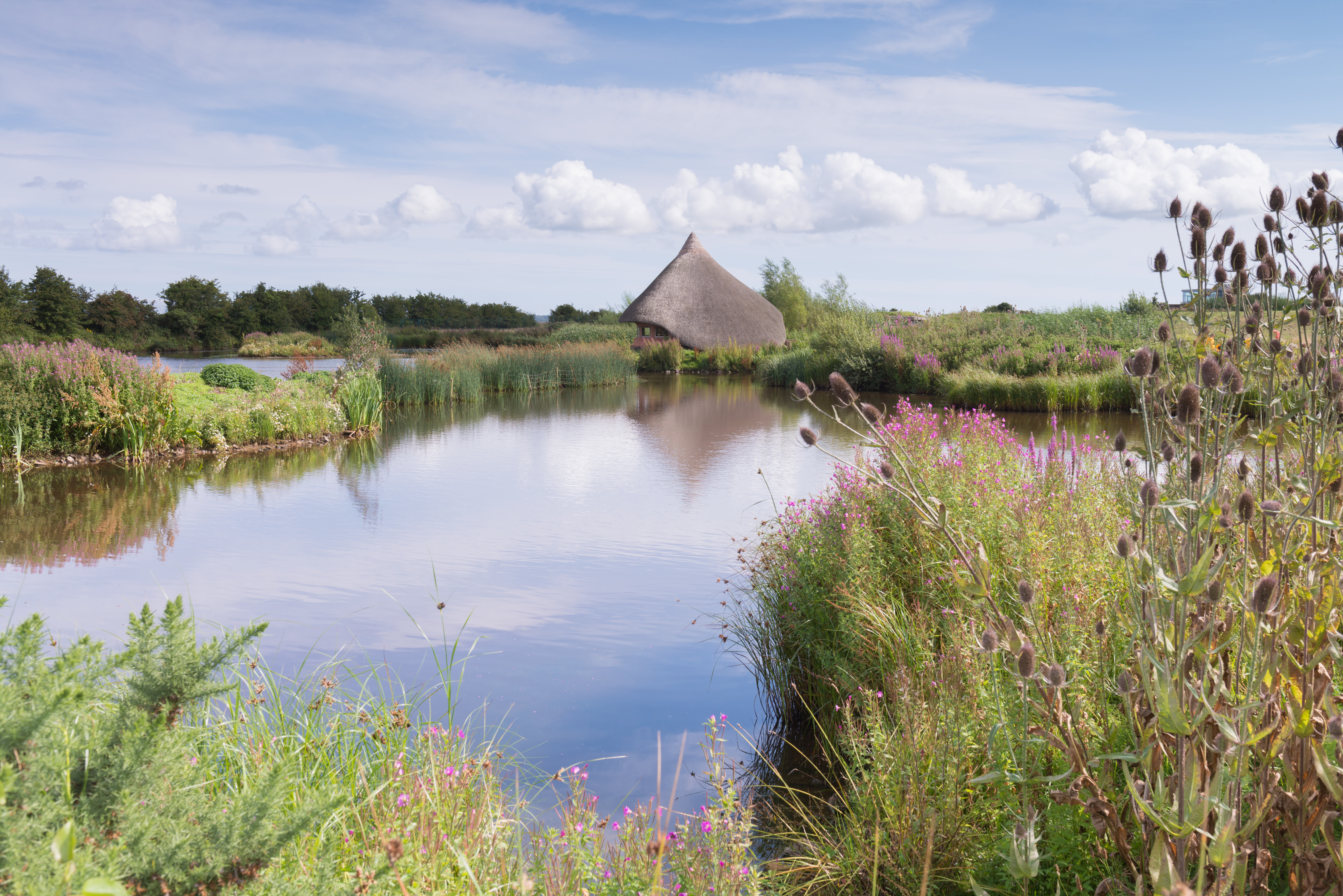 Castle Espie Wetland Centre receives grant of £203,400 from the Heritage Recovery Fund to help recover from the COVID-19 pandemic